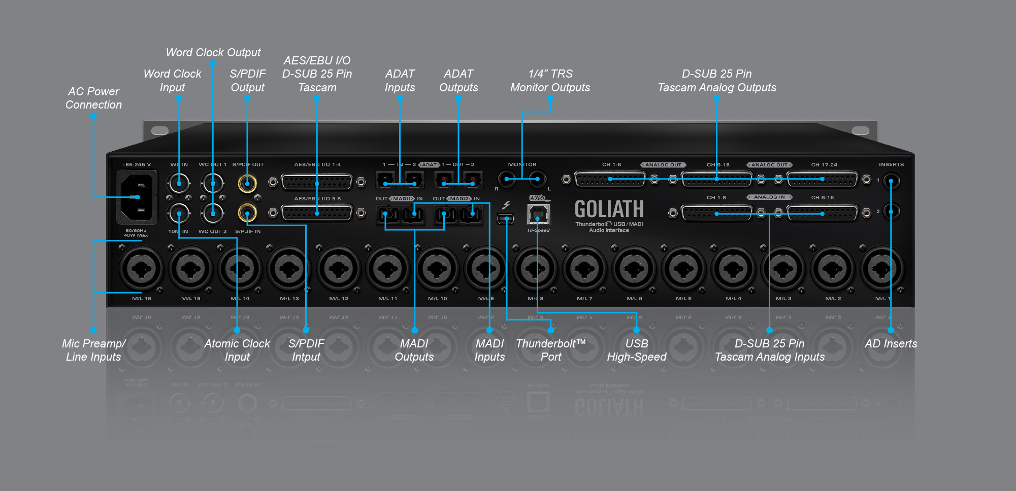 Goliath Thunderbolt Usb Madi Audio Interface Antelope Schematic For Zen Headphone Amplifier One Channel Front Panel Back