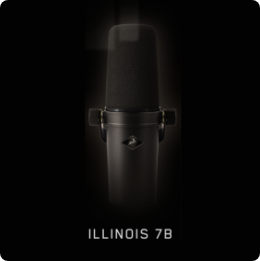 Illinois 7B@2x